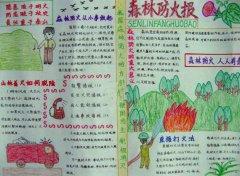 小学生森林防火安全小报模板漂亮_消防安全手抄报图片