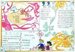 九九重阳节的来历手抄报内容资料_重阳节手抄报图片