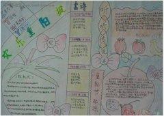 小学生欢乐重阳报手抄报模板 重阳节手抄报图片