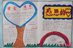二年级学会感恩手抄报内容模版_感恩手抄报图片