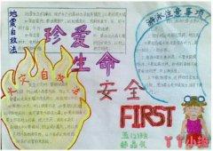 小学生一等奖健康安全手抄报的画法简单好看