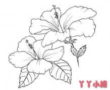 鲜花简笔画怎么画简单又漂亮手绘