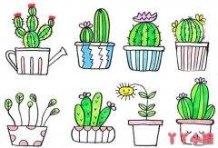 仙人球盆栽怎么画涂色 仙人球简笔画图片