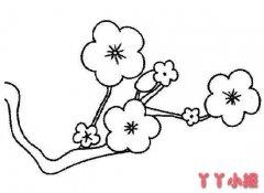 如何画一枝梅花的简笔画教程简单漂亮