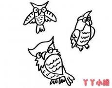 教你怎么画猫头鹰简笔画教程简单可爱