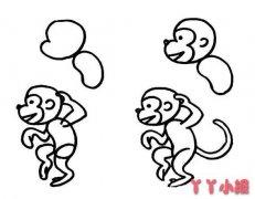 幼儿园一步一步画小猴子简笔画教程简单