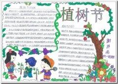 初一植树节的由来手抄报怎么画