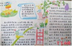 小学生植树造林保护环境手抄报内容资料