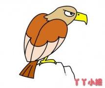 老鹰的画法步骤教程涂色简单又好看