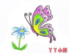 简笔画蝴蝶的画法步骤涂色简单又漂亮