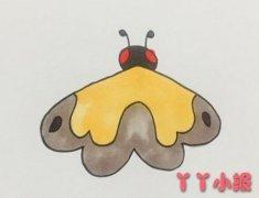 飞蛾怎么画简单涂色 飞蛾简笔画图片
