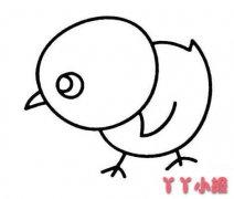 寻找食物的小鸡怎么画简笔画简单可爱