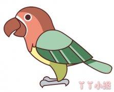 卡通鹦鹉怎么画涂色 鹦鹉简笔画图片