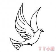 和平鸽怎么画简单漂亮 和平鸽简笔画图片