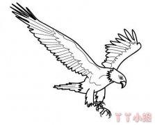 飞翔老鹰怎么画好看 老鹰简笔画图片