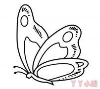 蝴蝶的画法简单又漂亮 蝴蝶简笔画图片