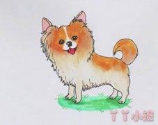 蝴蝶犬的画法步骤教程涂色简单好看