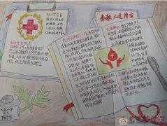 世界红十字日手抄报图片及内容四年级