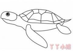 简单海龟的画法步骤图解 海龟简笔画图片