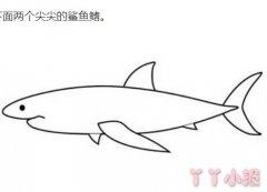 大白鲨怎么画带步骤图 鲨鱼简笔画图片