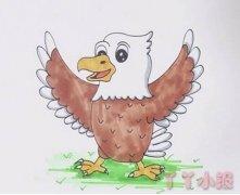 卡通老鹰的画法步骤涂颜色 老鹰简笔画图片