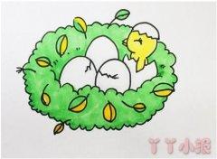 小鸟窝的画法步骤涂颜色 鸟窝简笔画图片