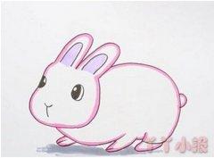 可爱小白兔的画法步骤教程 兔子简笔画图片