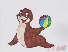 海狮顶球怎么画带步骤彩色 海狮简笔画