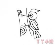 简笔画啄木鸟的画法步骤图简单又好看