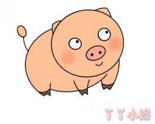 小猪怎么画简单又可爱 小猪的画法步骤图解