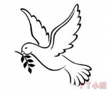 和平鸽橄榄枝简单画 和平鸽橄榄枝简笔画图片