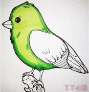 小鸟怎么画涂颜色 小鸟简笔画图片