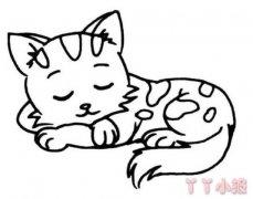 小猫的画法步骤教程 小猫简笔画图片