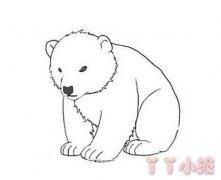 北极熊怎么画 带步骤简单又可爱
