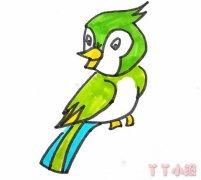 小鸟怎么画带步骤 小鸟涂色简笔画