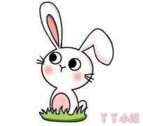 中秋节玉兔的画法步骤教程涂颜色可爱