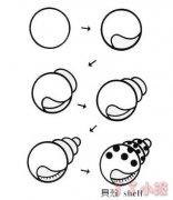 海螺贝壳怎么画带步骤图 贝壳简笔画图片