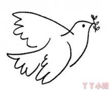 和平鸽怎么画简单 和平鸽简笔画图片
