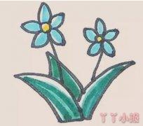 水仙花简笔画怎么画简单又漂亮涂色教程
