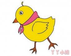小鸡怎么画带步骤彩色 小鸡简笔画图片
