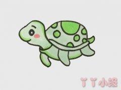 小海龟怎么画带步骤涂色 海龟简笔画图片
