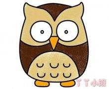 猫头鹰怎么画带步骤涂色 猫头鹰简笔画图片