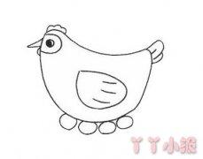 孵蛋母鸡简笔画怎么画带步骤简单又漂亮