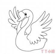 卡通白天鹅简笔画怎么画 天鹅简笔画图片