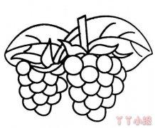 葡萄简笔画怎么画葡萄简笔画简单