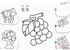 葡萄片怎么画 简笔画葡萄的画法教程