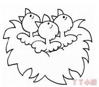 一窝小鸟怎么画简单 鸟窝简笔画图片