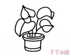 怎么画绿植盆栽简笔画图片教程简单漂亮