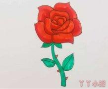 怎么画玫瑰花简笔画教程简单又漂亮涂色