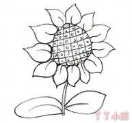 向日葵的画法步骤手绘 向日葵简笔画图片
